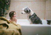 お風呂に入る男の子と犬