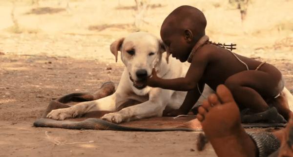 アフリカの赤ちゃんのおもちゃは…犬!