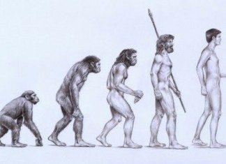 人類の進化