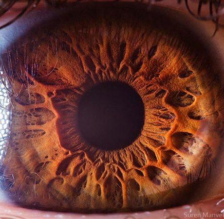 瞳のマクロ撮影2