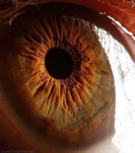 瞳のマクロ撮影5