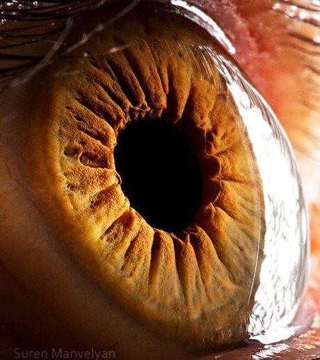 瞳のマクロ撮影3