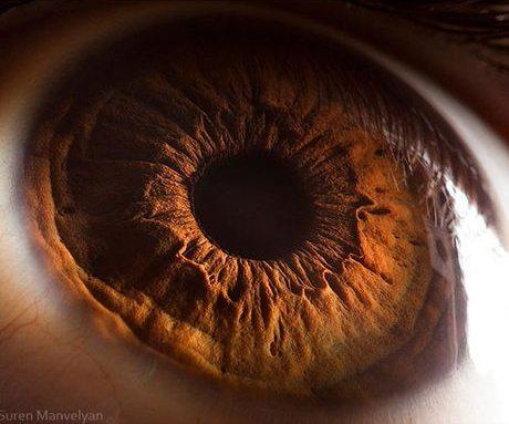 瞳のマクロ撮影4