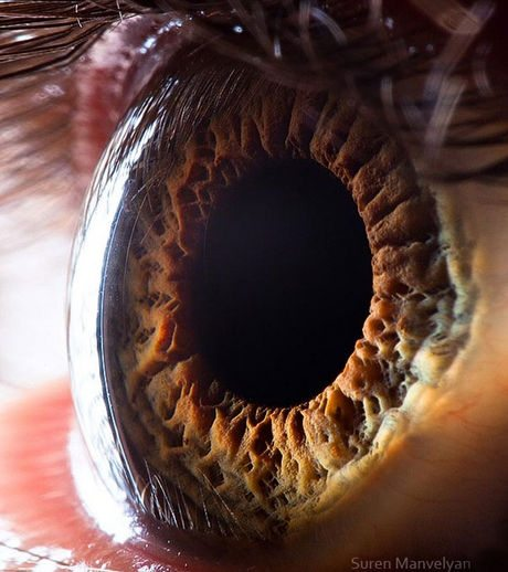 瞳のマクロ撮影6