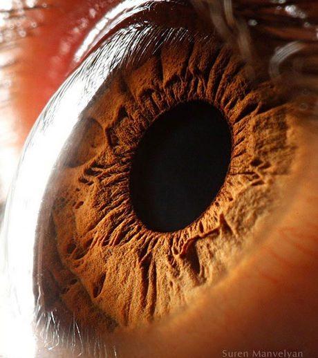 瞳のマクロ撮影7