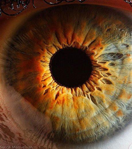 瞳のマクロ撮影8