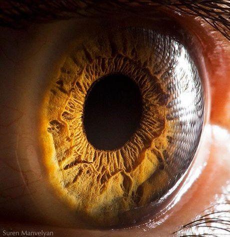 瞳のマクロ撮影10