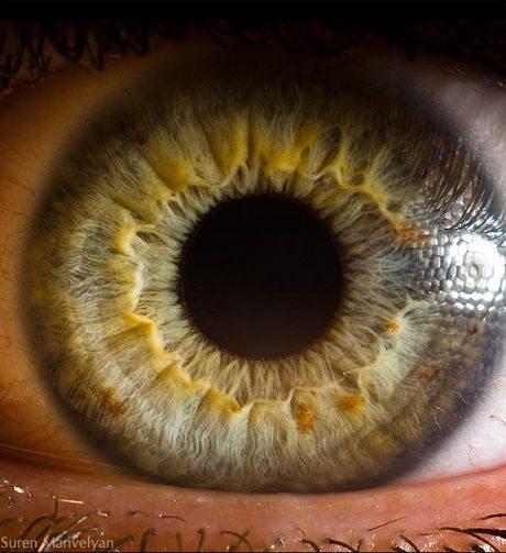 瞳のマクロ撮影11
