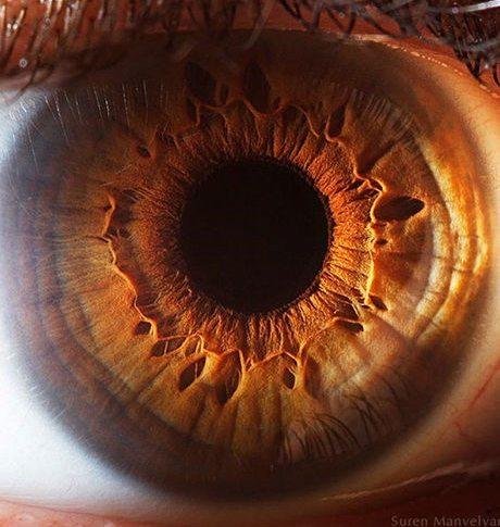 瞳のマクロ撮影12