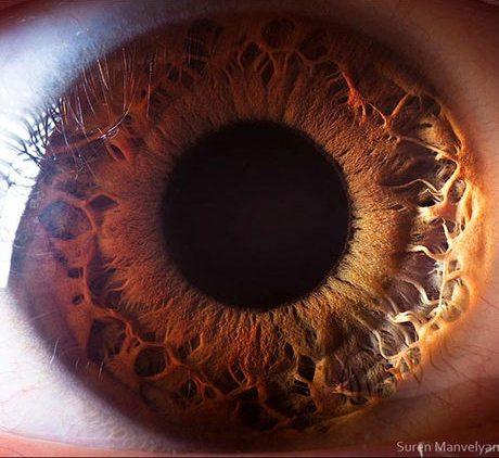 瞳のマクロ撮影13