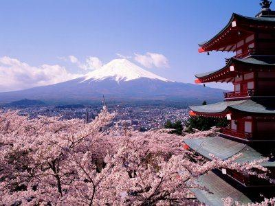 外国人は日本生活でなにを発見するのか? まとめ