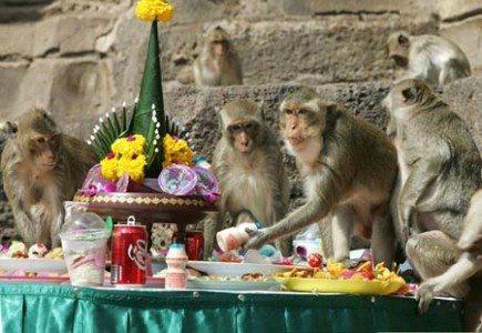 世界のクレイジーな祭りランキング
