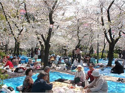 外国人もきっと喜ぶ! 日本の素晴らしい年中行事・風習ランキング