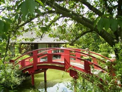 海外で「日本文化が広がっているな~」と感じる瞬間8パターン~フランス編