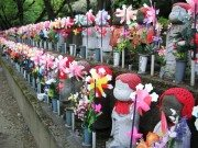 日本は世界一の中絶が多い国?なぜ日本ではピルが浸透しないのか?