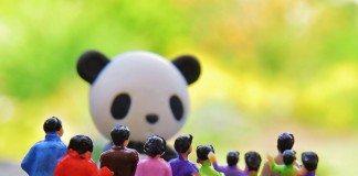 世界の人口統計、増え続ける人口