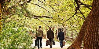 外国人女性大学教授が振り返る『日本で教えることの素晴らしさ』