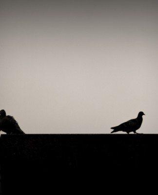 離婚理由No.1!性格の不一致で離婚にいたる夫婦の10の共通点