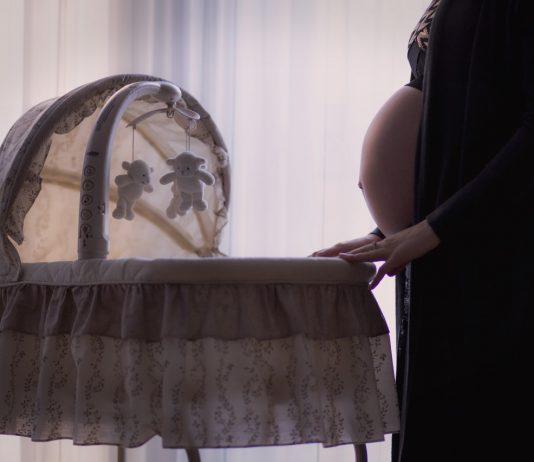 マダムリリーからご報告。妊娠&ヴェルサイユへ引っ越しました!